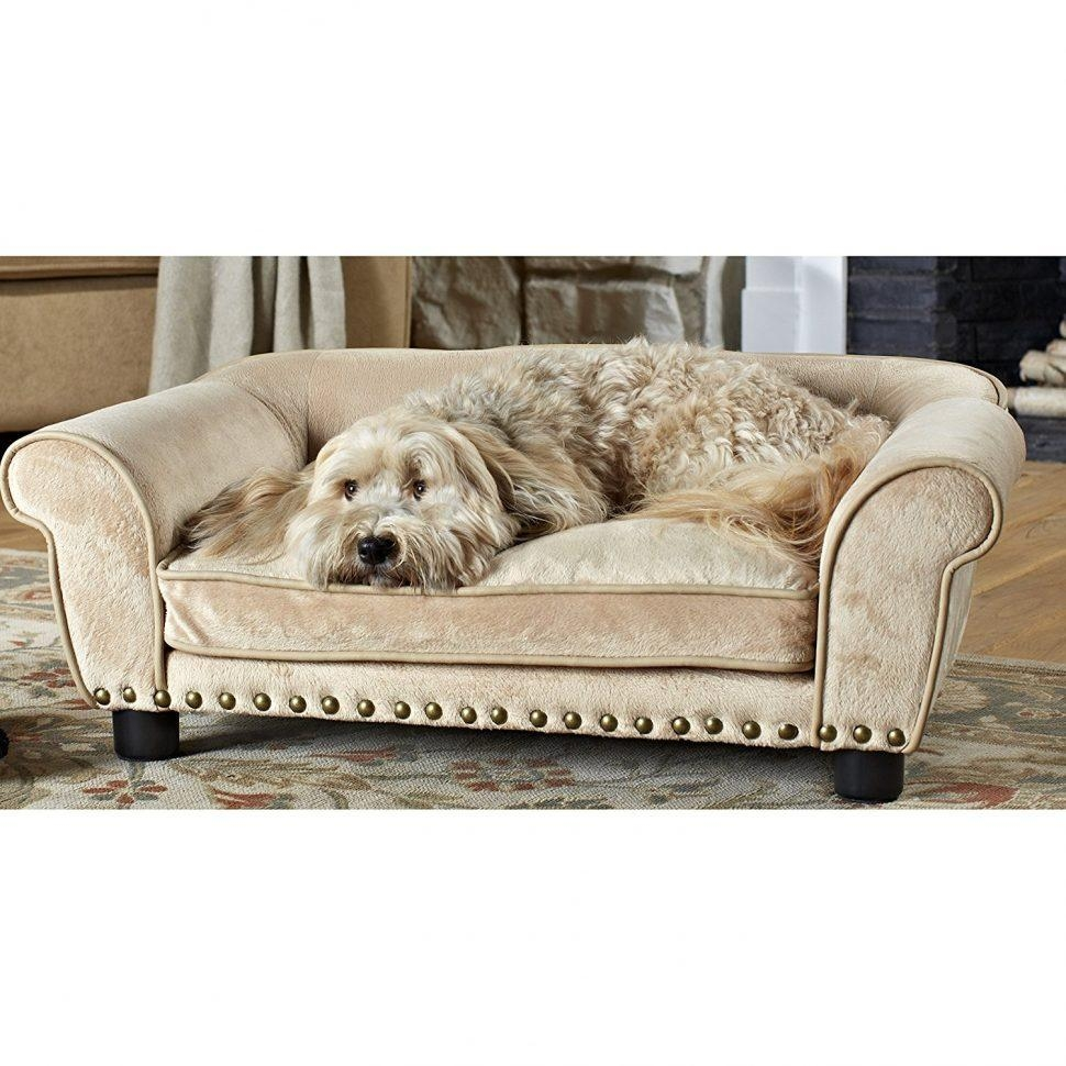 Sofas Center : Luxury Dog Sofa Snoozer Couch Microsuede Fabric Intended For Snoozer Luxury Dog Sofas (Image 18 of 20)