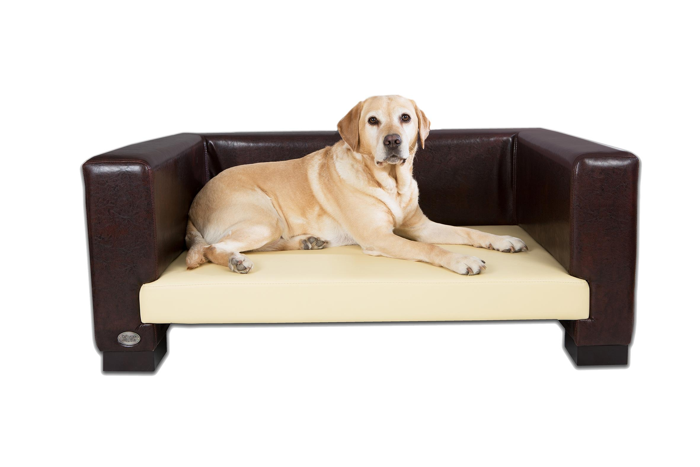 Sofas Center : Stunning Pet Sofa Picture Ideas Dog Luxury Home Within Sofas For Dogs (Image 17 of 20)