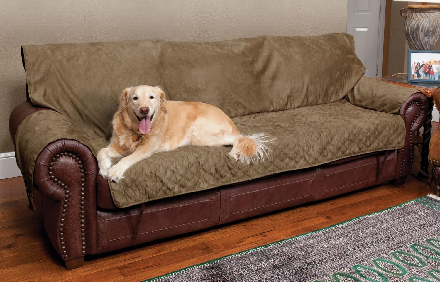 Sofas Center : Unbelievable Pet Sofa Covers Photos Concept For Pertaining To Sofas For Dogs (Image 18 of 20)