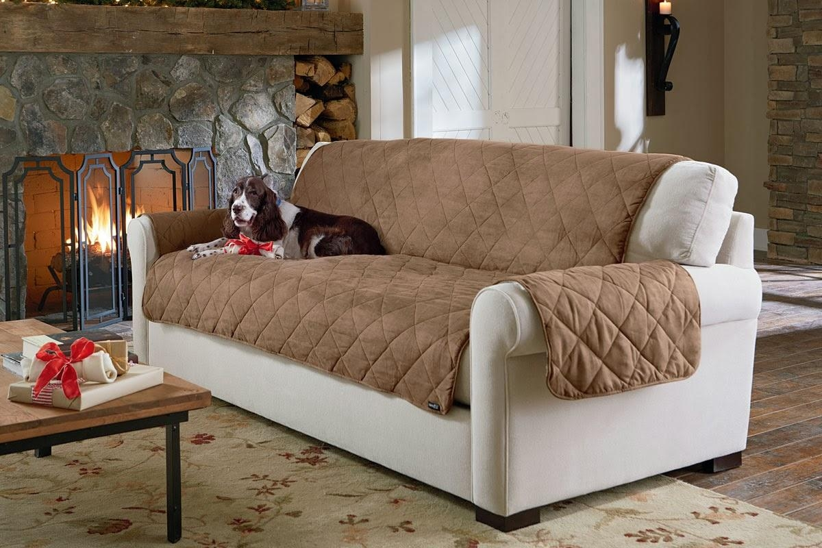 Featured Photo of Pet Proof Sofa Covers
