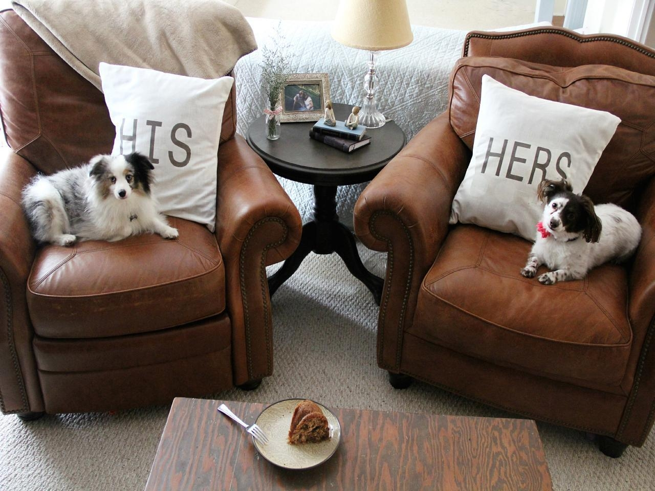 Tips For A Pet Friendly Home | Hgtv Throughout Cat Proof Sofas (View 10 of 20)