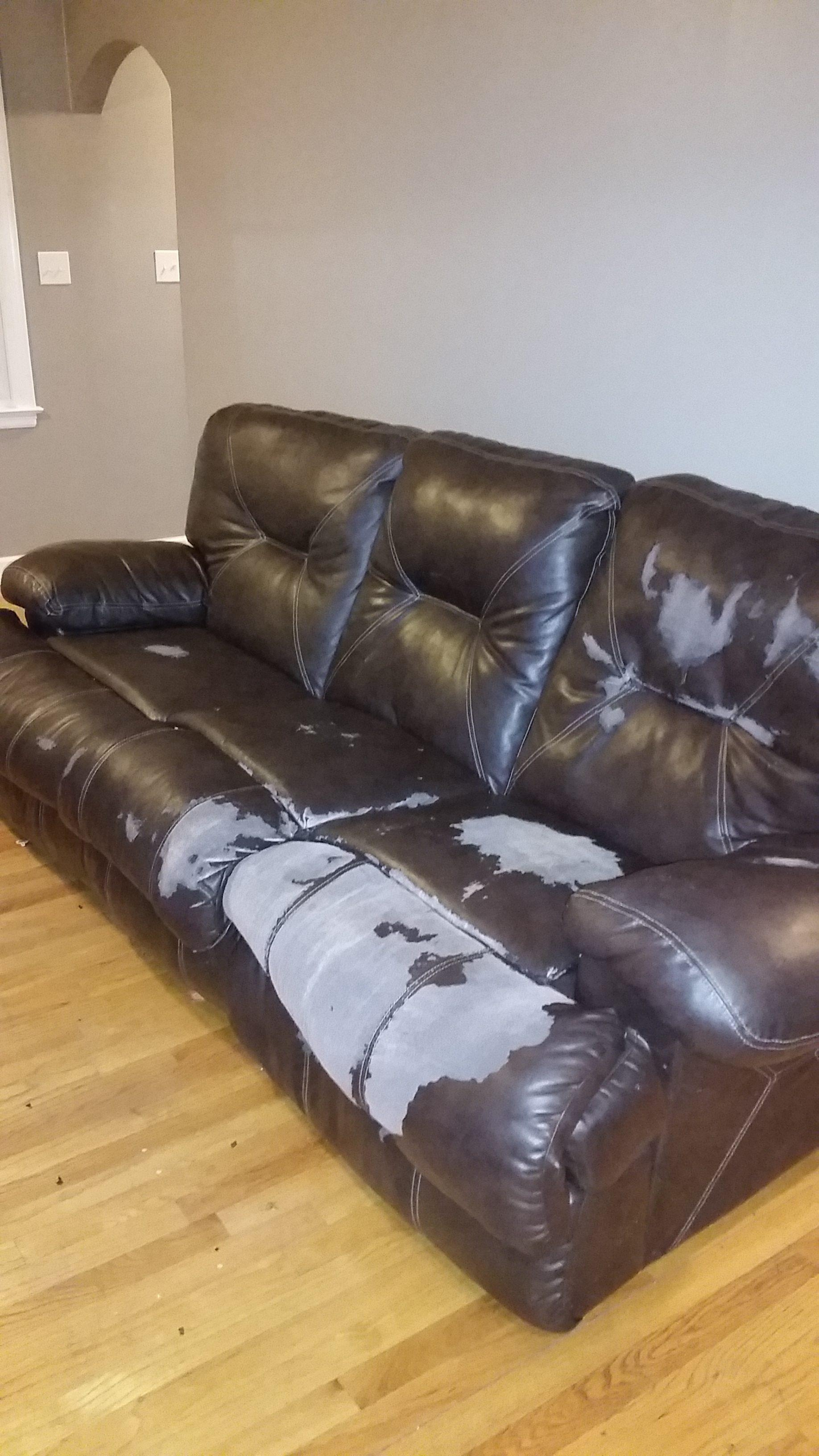 Top 235 Reviews And Complaints About Jackson Furniture Industries With Catnapper Sofas (Image 18 of 20)