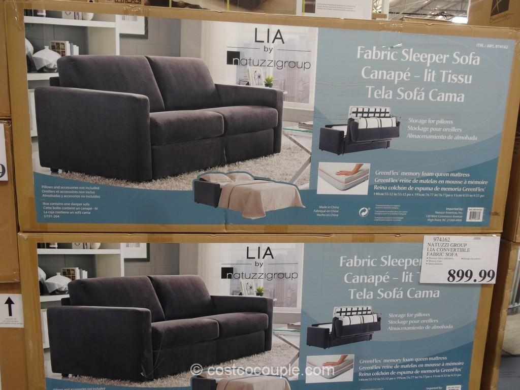 Tourdecarroll – Sleeper Sofa Within Natuzzi Sleeper Sofas (View 20 of 20)