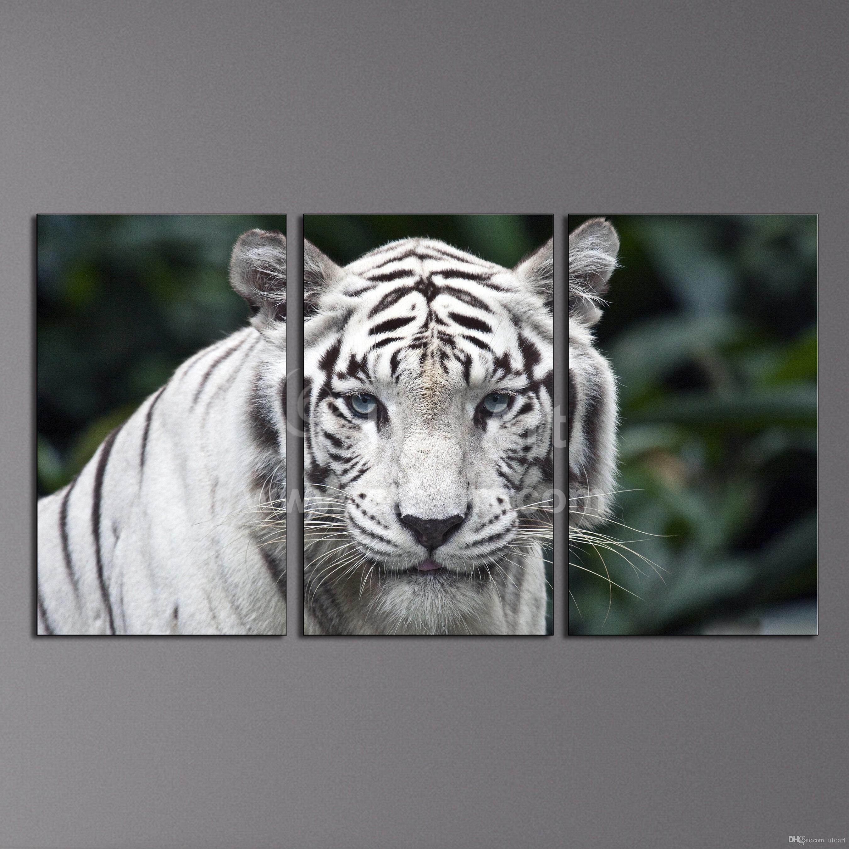 2017 Modern Wall Art Painting White Tiger Home Decor Canvas Inside 3 Piece Modern Wall Art (View 20 of 20)
