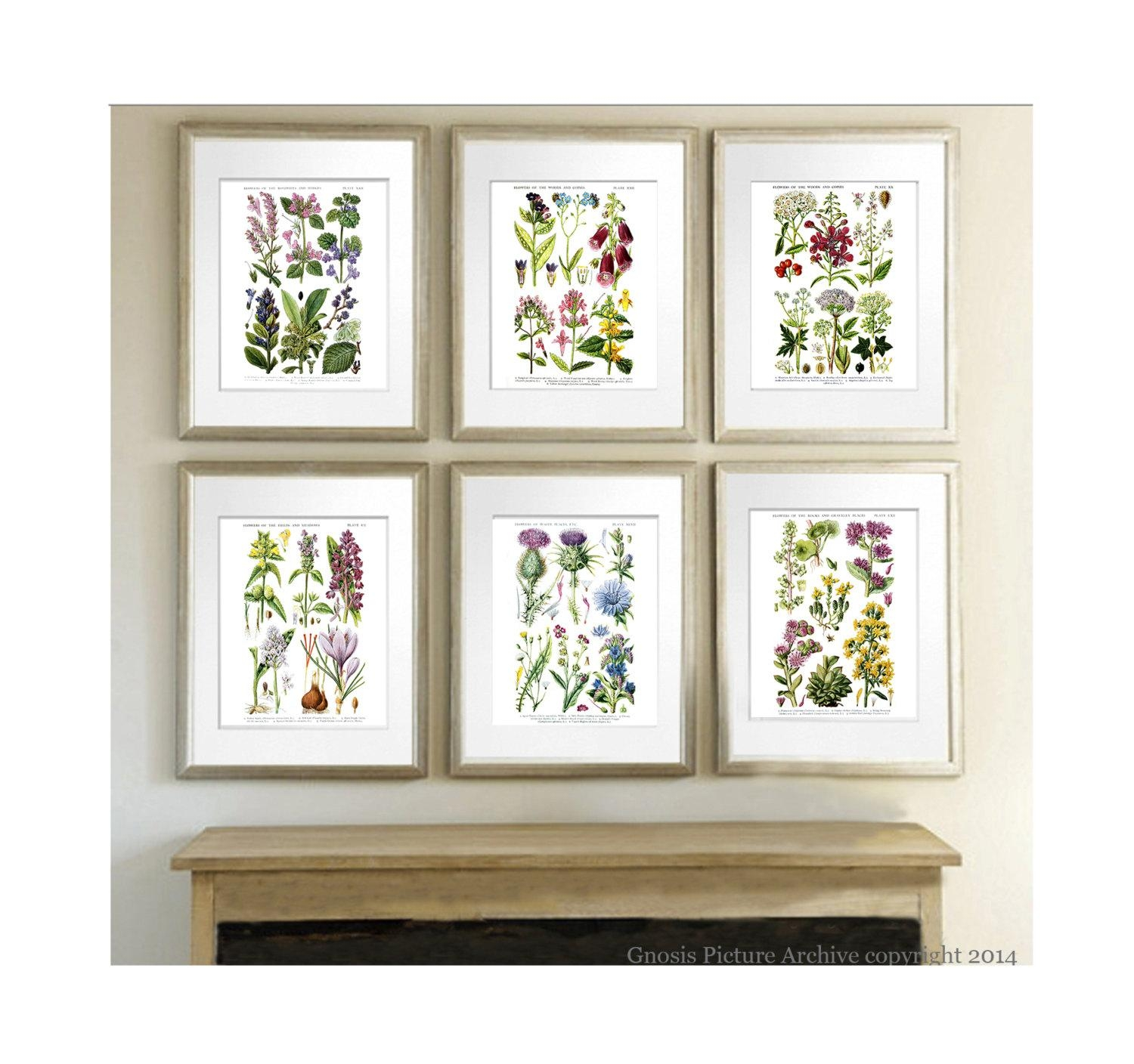 Anniversary Gift For Her Botanical Art Prints Wild Flowers Pertaining To Botanical Prints Etsy (Image 14 of 20)