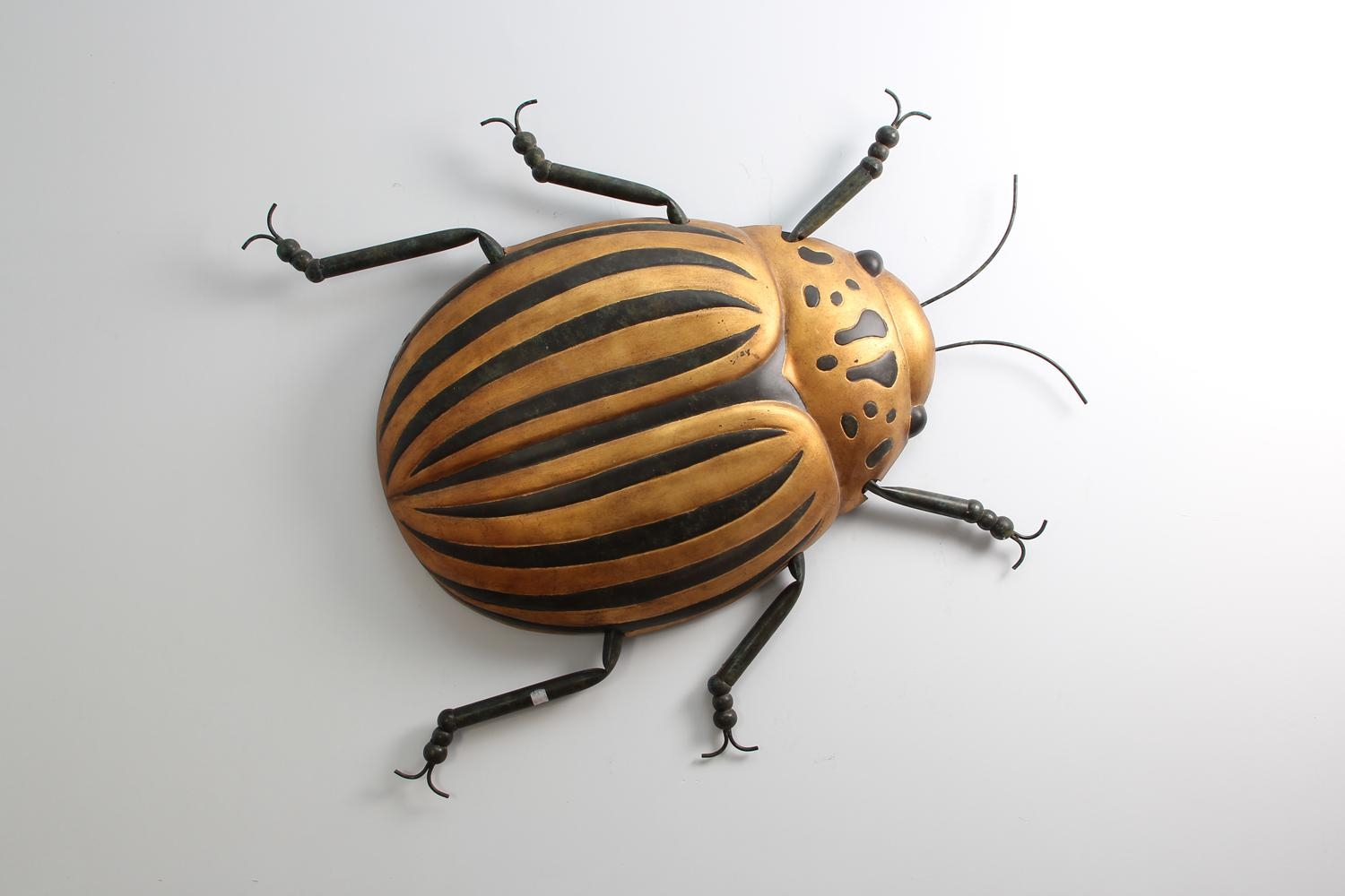 Beetle Bug Wall Art | Forwood Design With Regard To Insect Wall Art (Image 4 of 20)