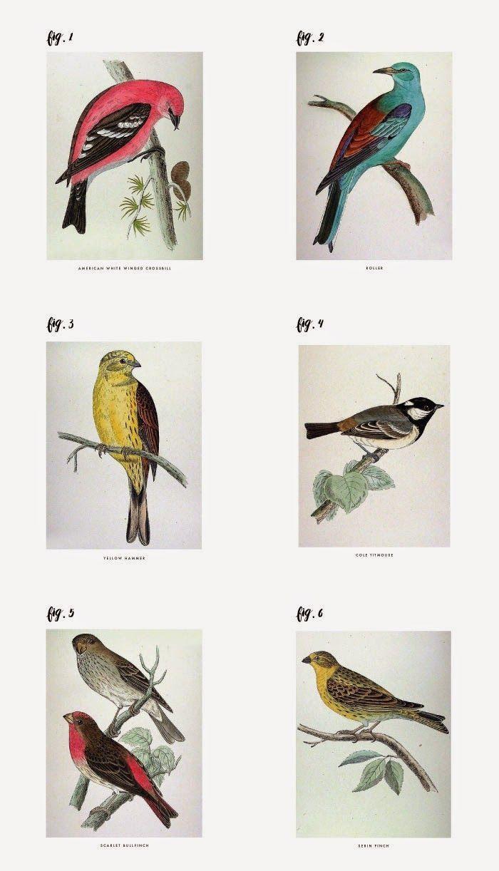 Best 25+ Bird Wall Art Ideas Only On Pinterest | Pistachio Shells In Ceramic Bird Wall Art (View 16 of 20)