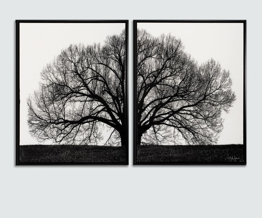 Black And White Framed Wall Art Fancy Wall Art Decor For Cheap For Cheap Black And White Wall Art (View 13 of 20)