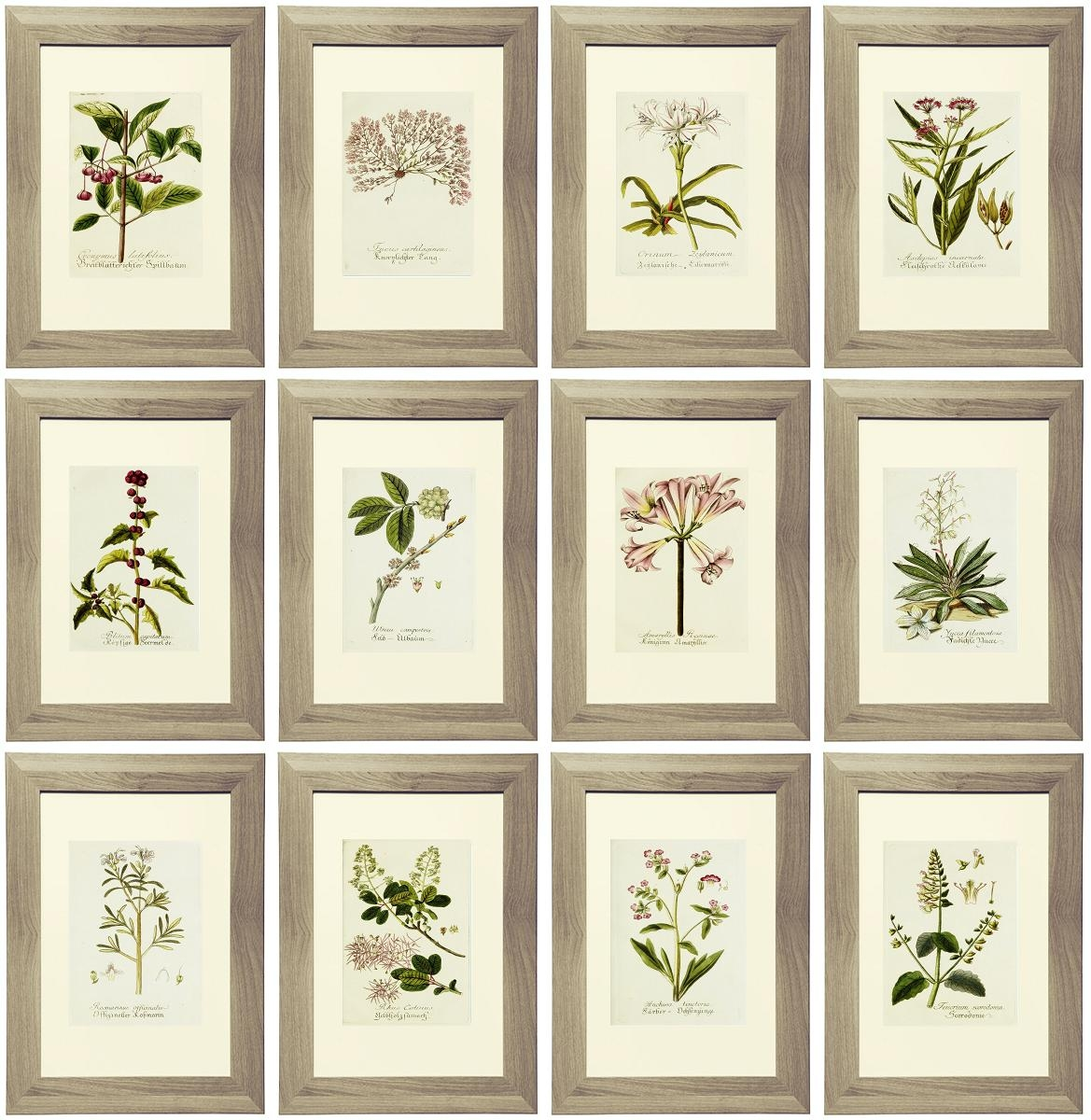 Botanical Wall Art Ideal Metal Wall Art For Abstract Wall Art With Regard To Botanical Metal Wall Art (Image 6 of 20)