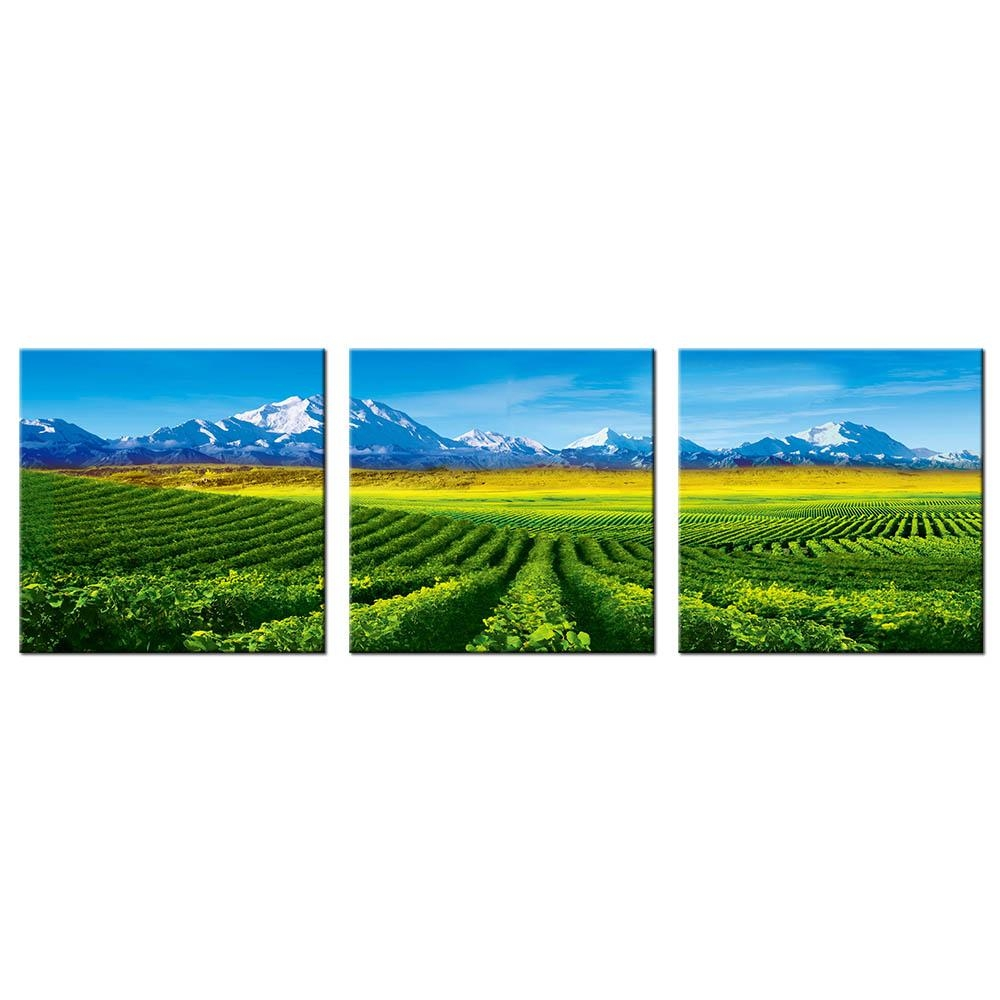 Compare Prices On Vineyard Wall Art Online Shopping/buy Low Price Regarding Vineyard Wall Art (View 13 of 20)