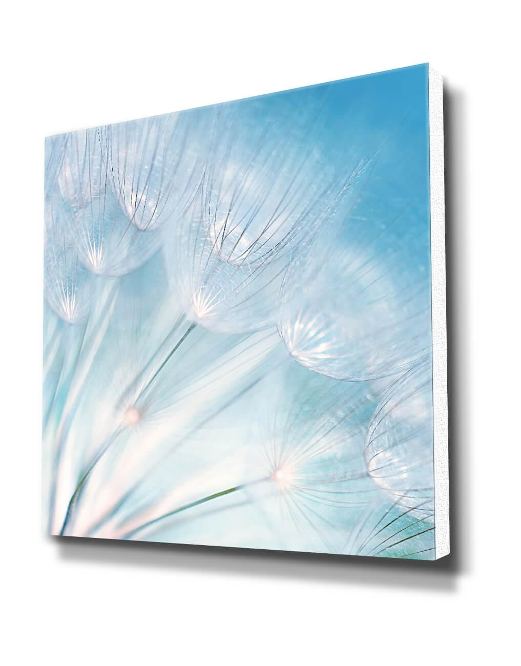 Dandelion Detail, Blue – Silver Wall Art, Contemporary Art Uk Pertaining To Blue And Silver Wall Art (Image 12 of 20)