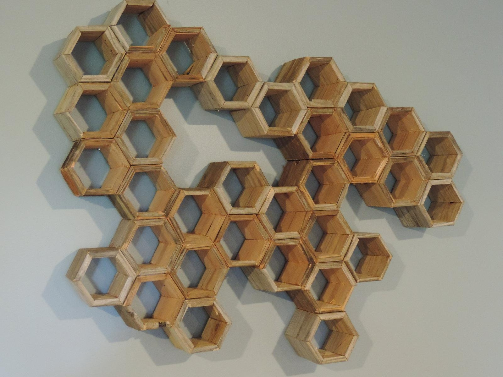 Driftwood Honeycomb Wall Artphilryanwoodworking On Deviantart Intended For Driftwood Wall Art (Image 6 of 20)