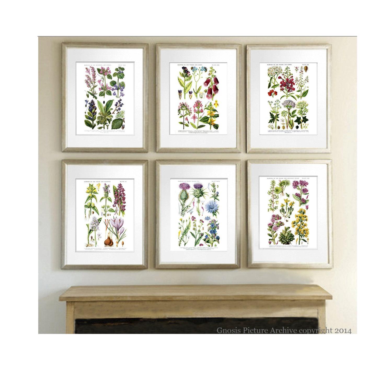 Fall Decor Botanical Art Prints Wild Flowers Botanical Print Within Wall Art Print Sets (View 4 of 20)
