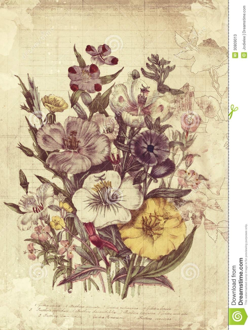 Flowers Botanical Vintage Style Wall Art With Textured Background Pertaining To Vintage Style Wall Art (Image 8 of 20)