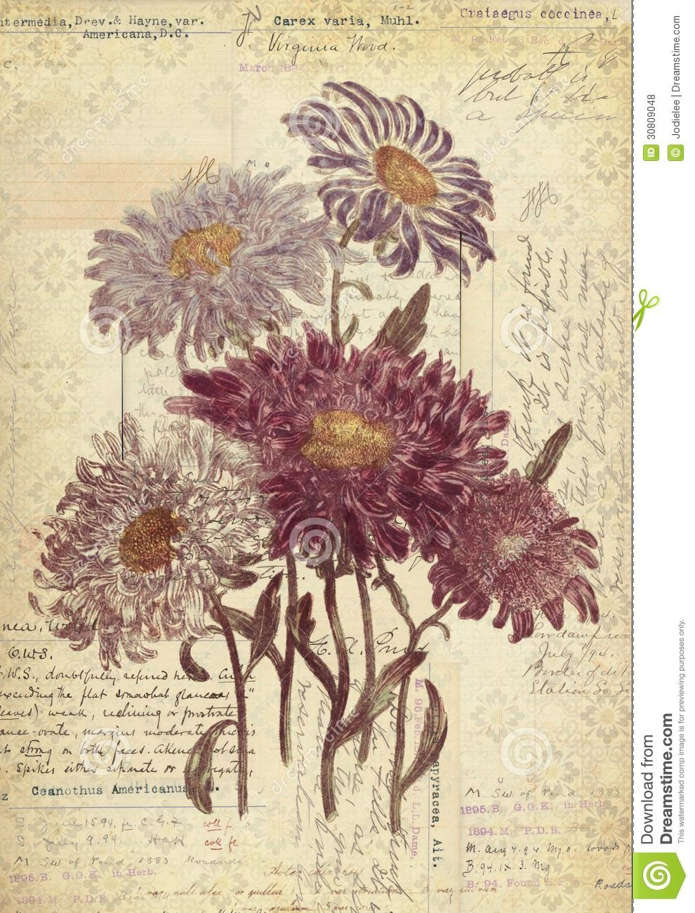 Flowers Botanical Vintage Style Wall Art With Textured Background Within Vintage Style Wall Art (Image 12 of 20)
