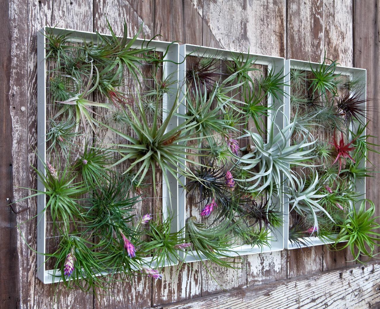 Garden Wall Art | Roselawnlutheran Regarding Outside Wall Art (View 8 of 20)