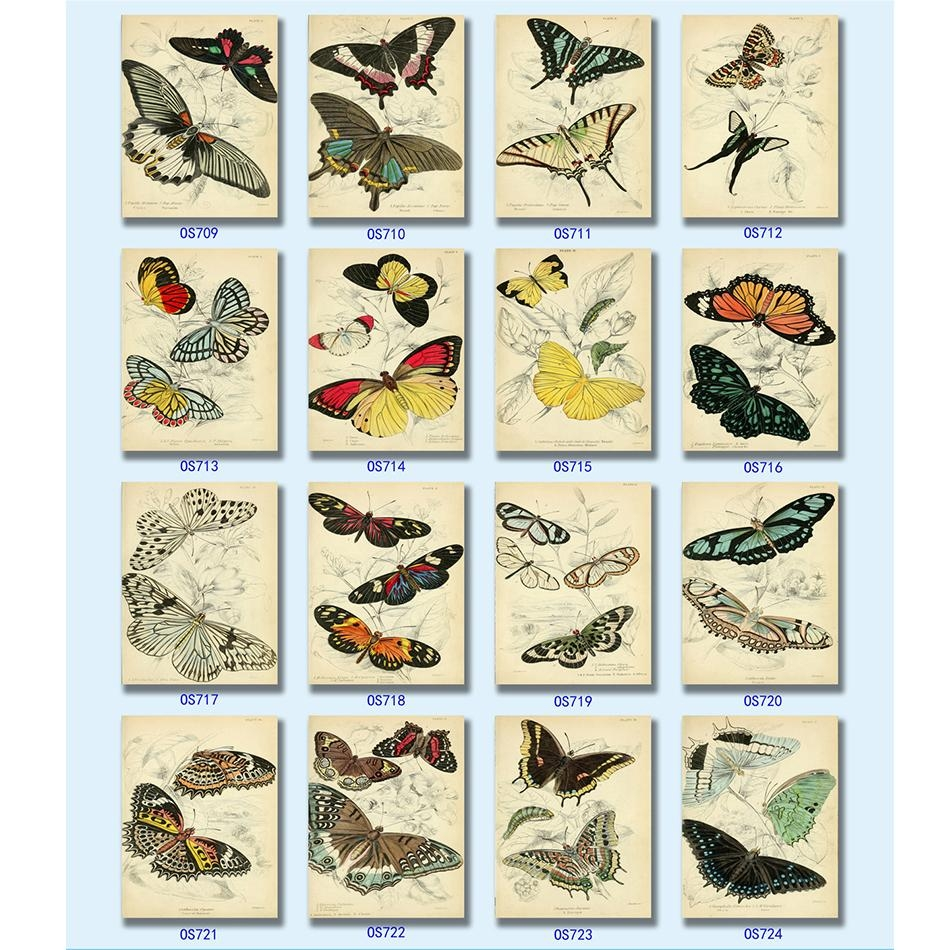 Insect Wall Art Reviews – Online Shopping Insect Wall Art Reviews In Insect Wall Art (Image 8 of 20)