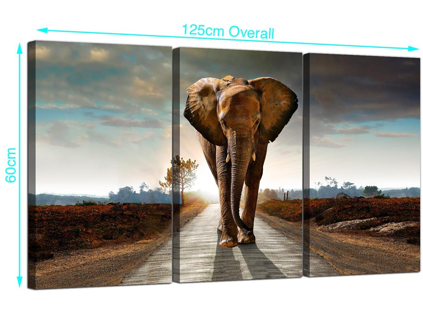 Large African Elephant Canvas Prints 3 Part For Your Hallway With 3 Set Canvas Wall Art (View 17 of 20)