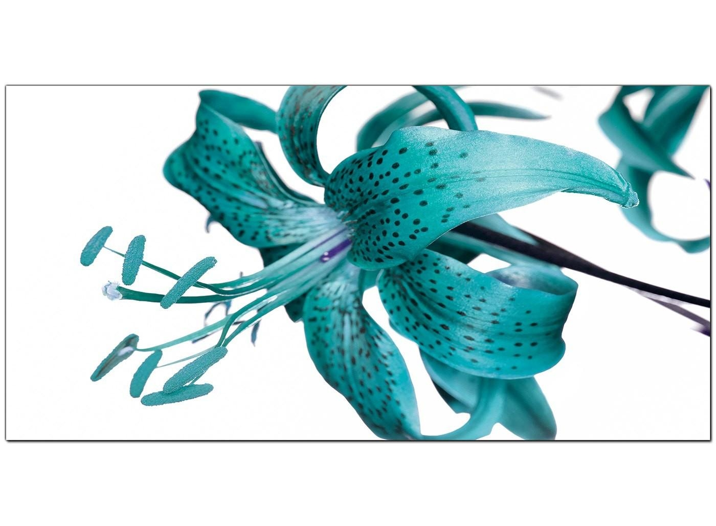 Large Teal Canvas Prints Of A Tiger Lily Flower Throughout Teal Flower Canvas Wall Art (Image 16 of 20)