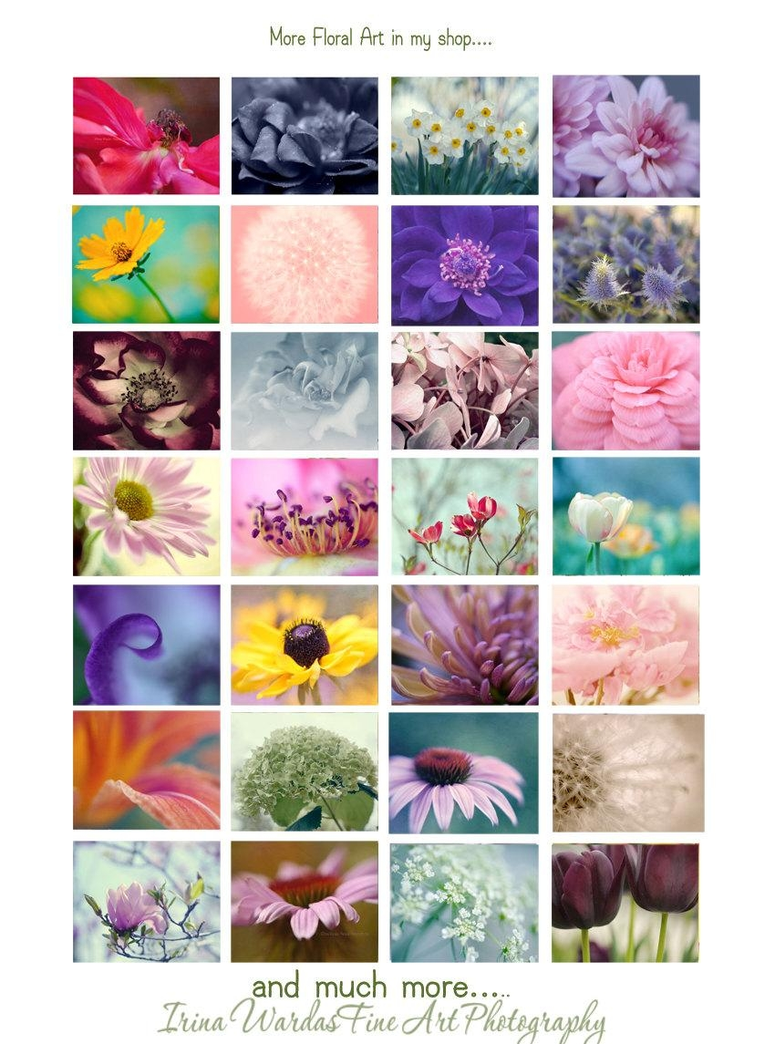 Large Wall Canvas Prints | Green Pink Wall Art Set Of 2 | Floral Decor Intended For Black And White Wall Art Sets (Image 11 of 20)