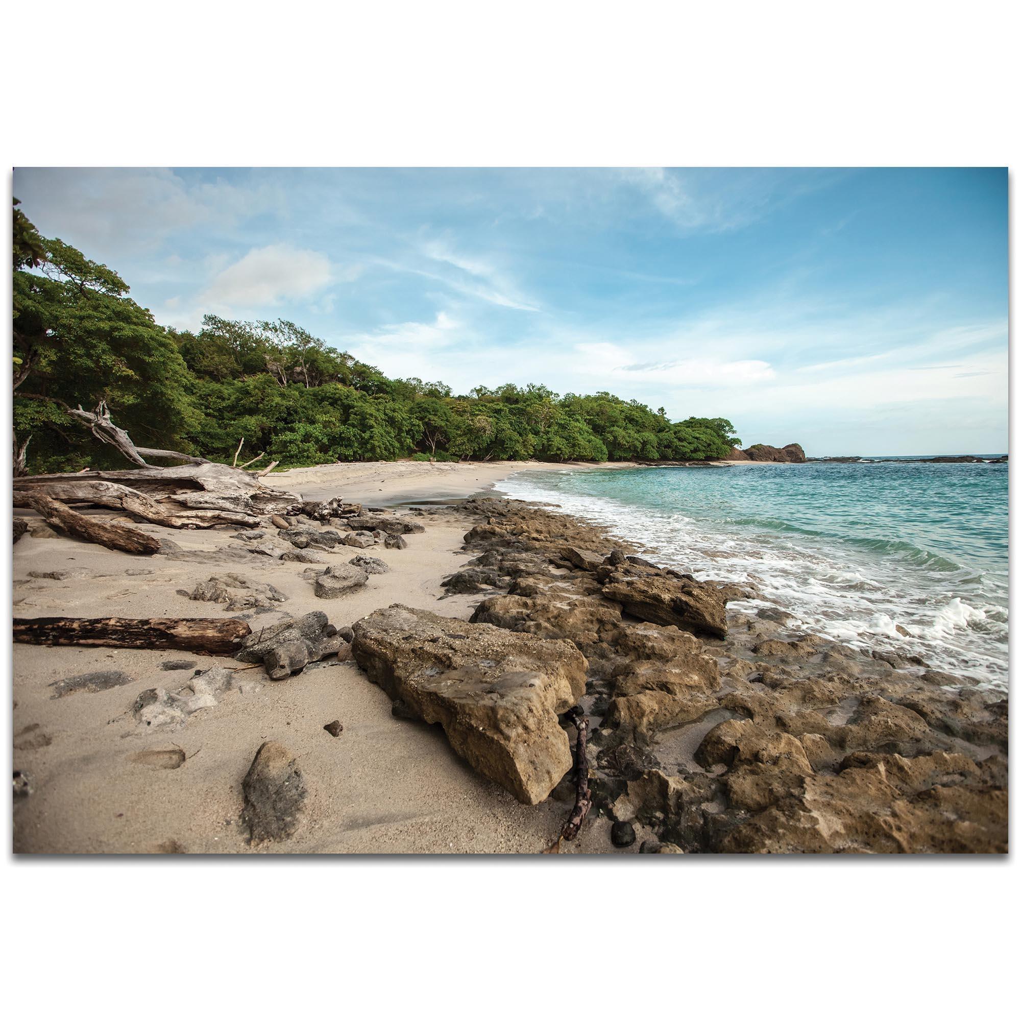 Metal Art Studio – Tropical Junglemeirav Levy – Coastal Wall For Coastal Wall Art (Image 12 of 20)