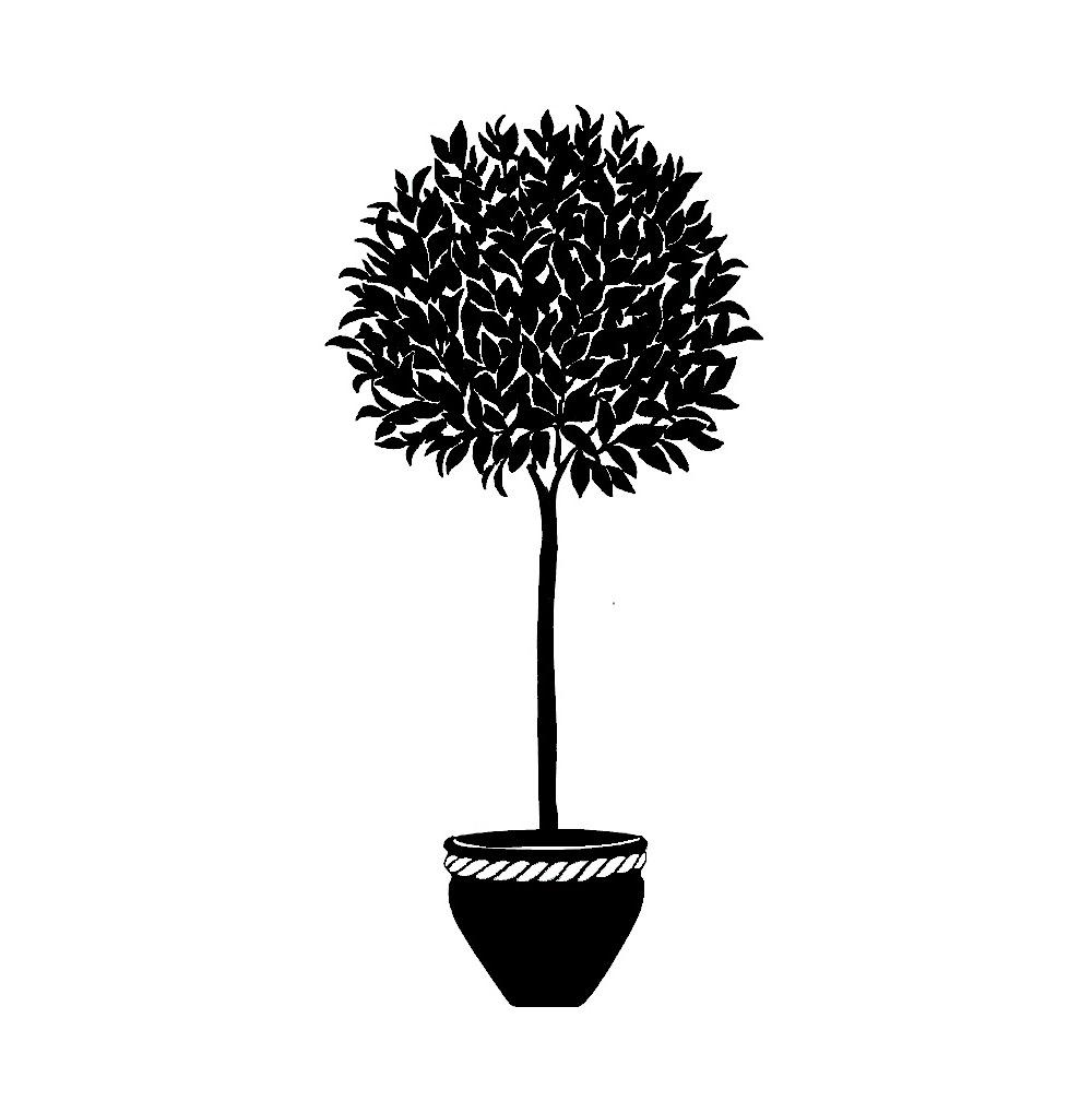 Metal Wall Art Bay Tree Topiary Silhouette Intended For Topiary Wall Art (Image 13 of 20)