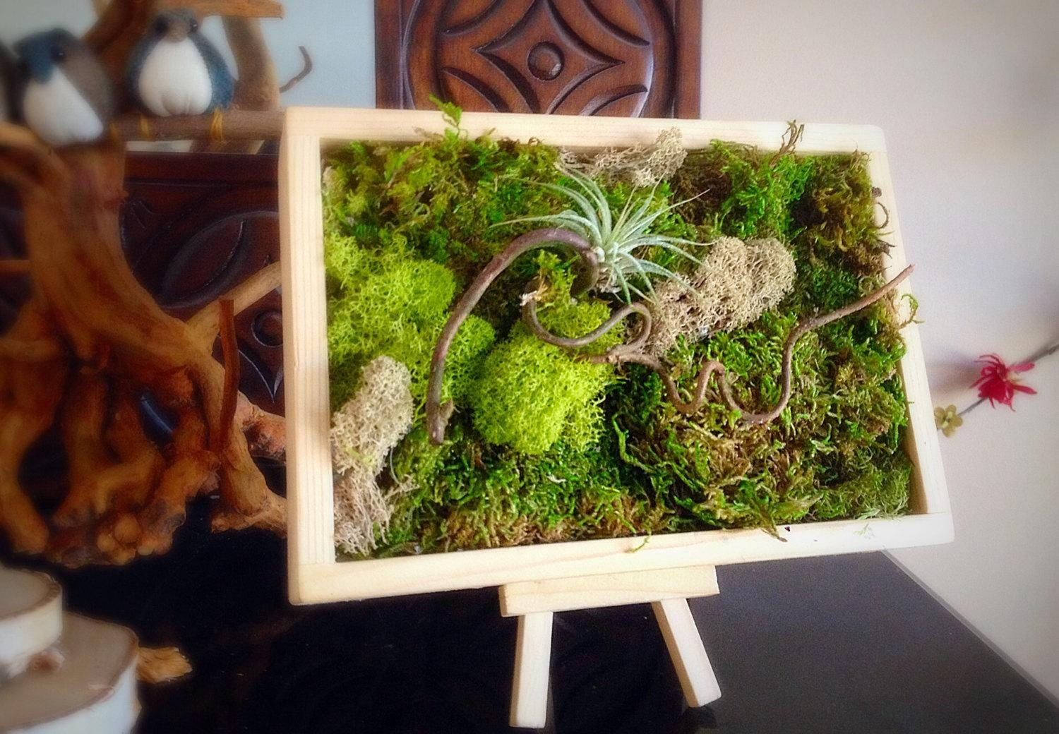 Moss Art Wall/ Hanging Garden/ Vertical Garden/ Living Wall/ Within Floral & Plant Wall Art (View 10 of 20)