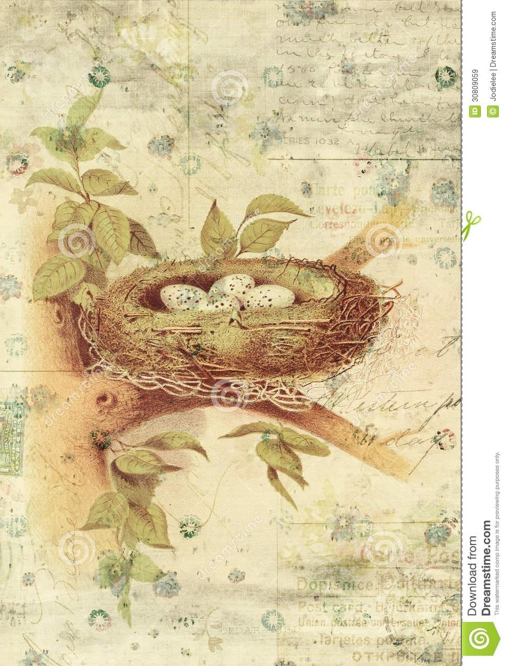 Nest And Bird Eggs Botanical Vintage Style Wall Art With Textured for Vintage Style Wall Art