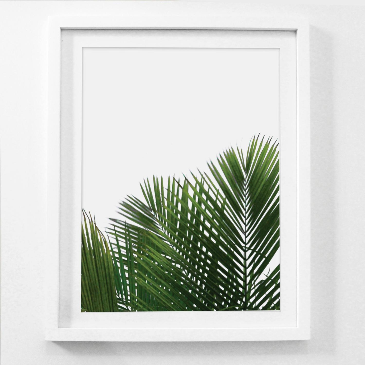 Featured Photo of Palm Leaf Wall Art