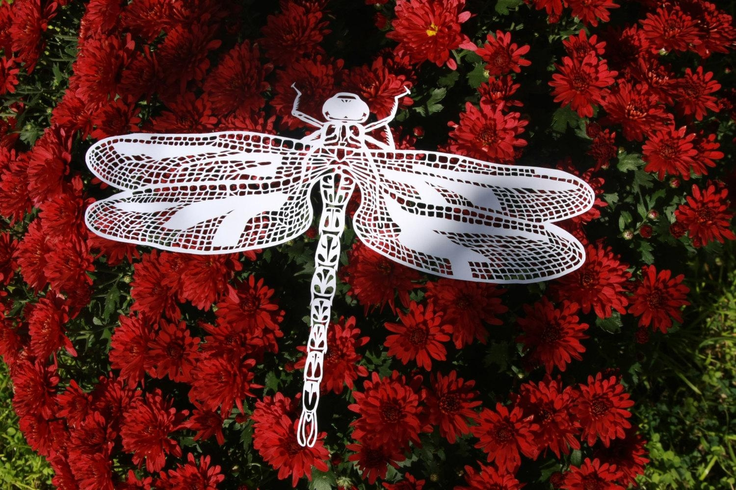 Paper Cut Dragonflyhandmade Paper Cut Dragonfly Insect Wall Intended For Insect Wall Art (Image 13 of 20)