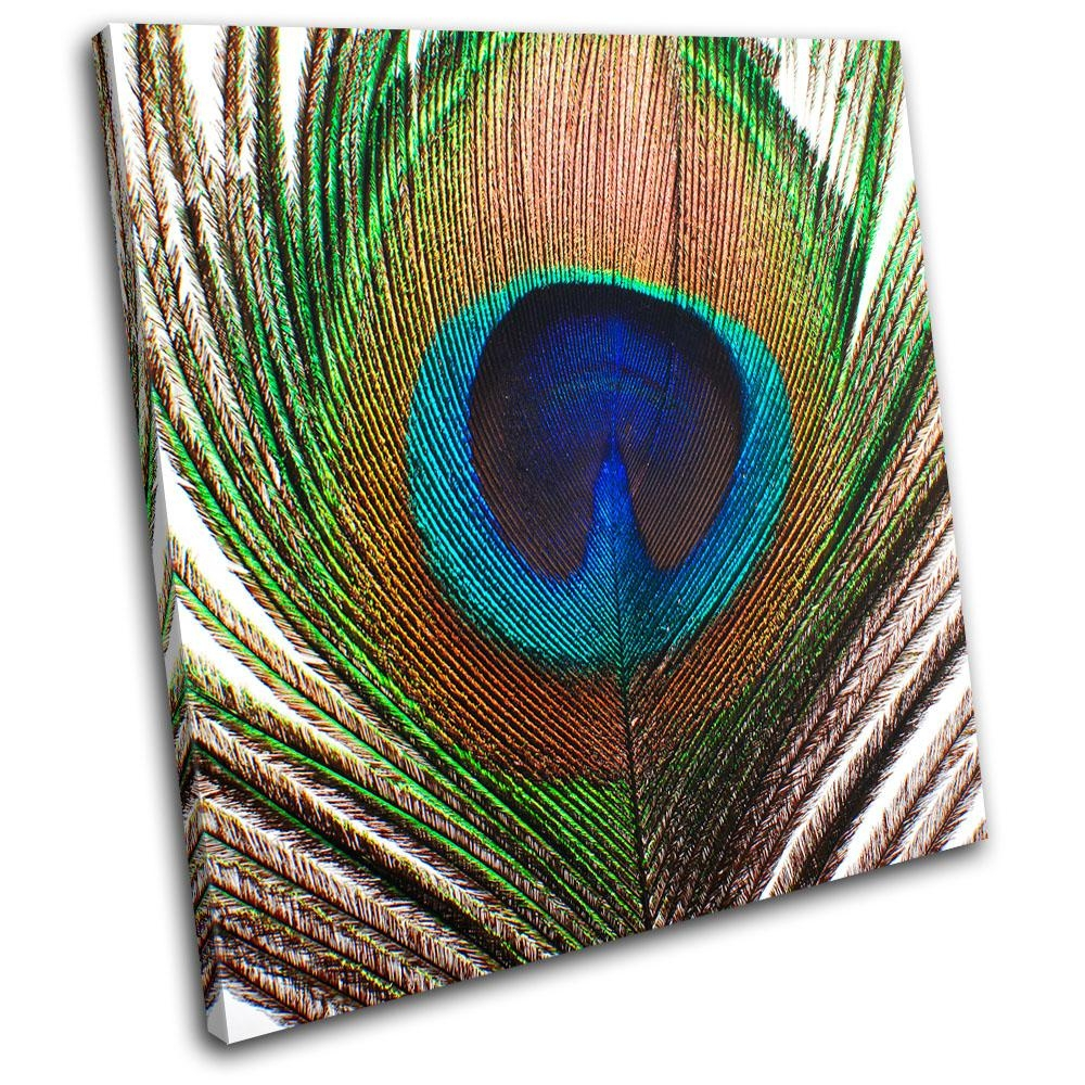Peacock Feather Animals Single Canvas Wall Art Picture Print Va | Ebay With Animal Canvas Wall Art (Image 15 of 20)