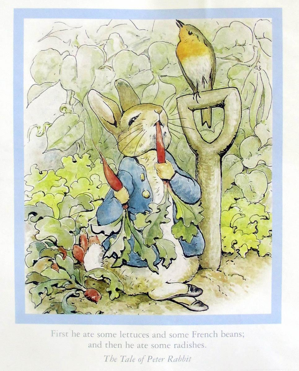 Peter Rabbit Wall Hanging   Weallsew Throughout Peter Rabbit Wall Art (Image 16 of 20)