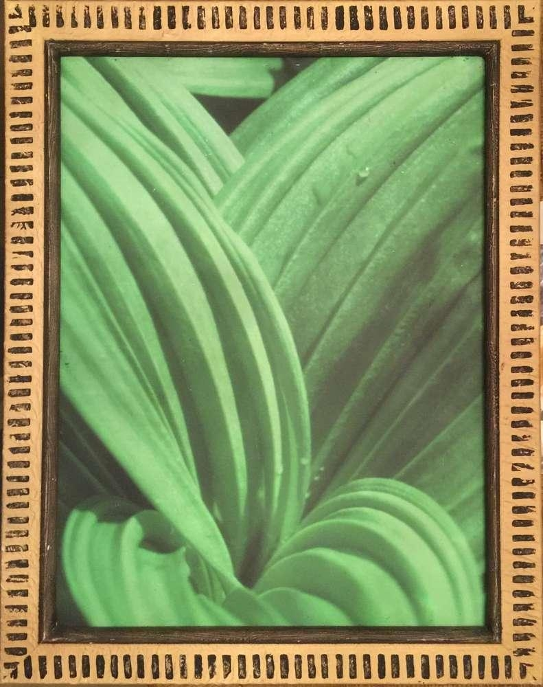 Polynesian Resort Fern Leaf Wall Art Pertaining To Polynesian Wall Art (Image 12 of 20)