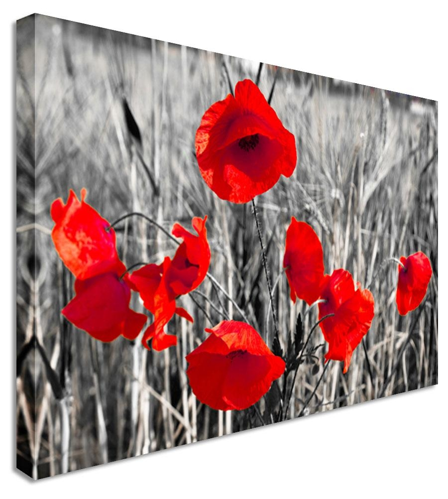 Red Poppy Canvas Wall Art - Decorative Painting On Canvas Picture with regard to Red Poppy Canvas Wall Art
