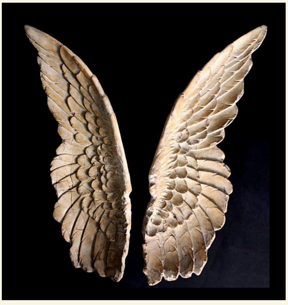 Sculpture For Sale | Ancient Angel Wings Wall Art Replica – Set Of Within Angel Wings Sculpture Plaque Wall Art (Image 16 of 20)