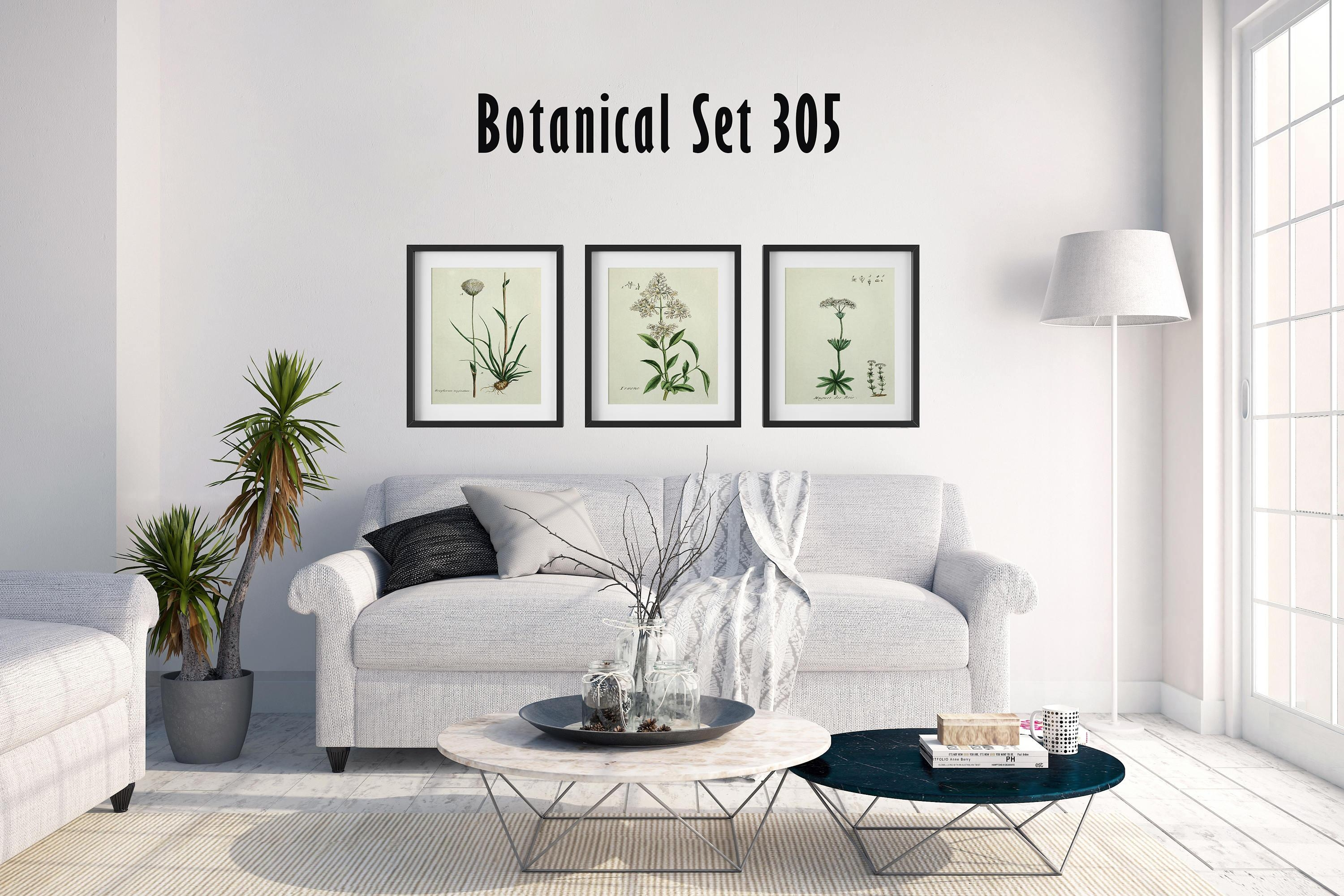 Set Of 3 Botanical Prints, White Floral Prints, Cottage Chic Decor Pertaining To Country French Wall Art (View 19 of 20)