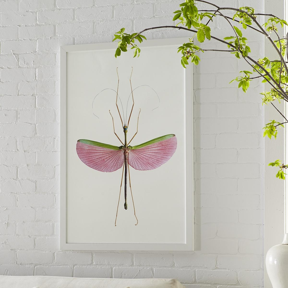 Stick Insect Wall Art – Watermelon Intended For Insect Wall Art (Image 18 of 20)
