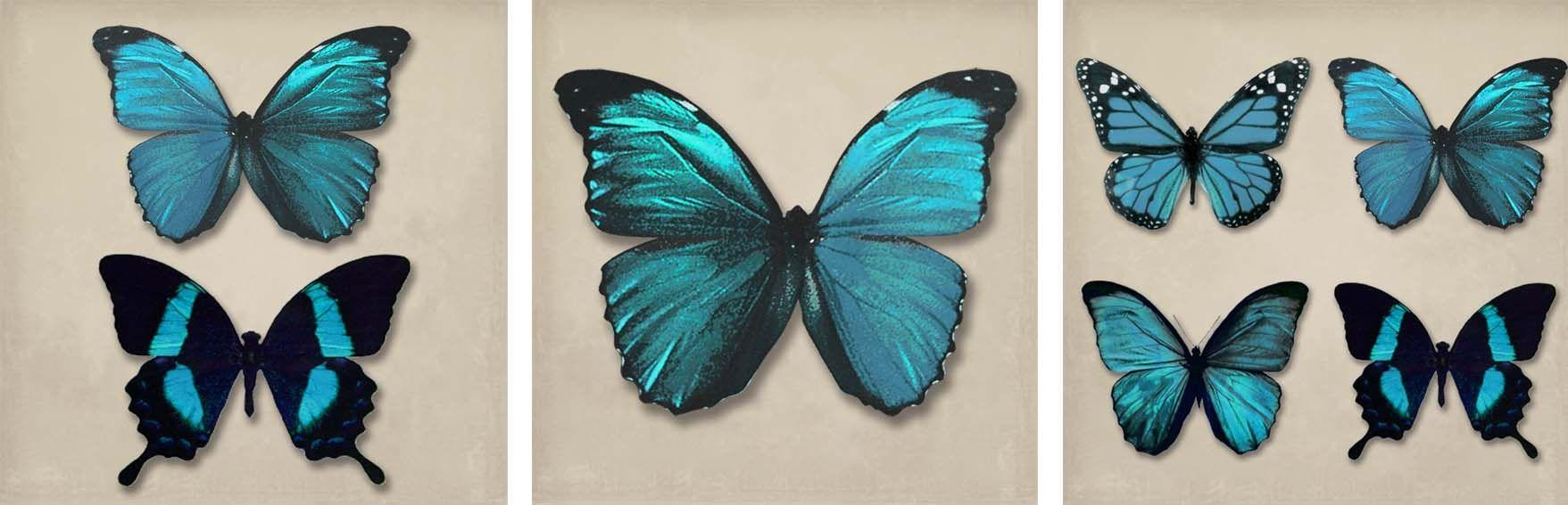 Teal Butterflies Set Of 3 Canvasesarthouse : Wallpaper Direct Regarding Butterfly Canvas Wall Art (View 18 of 20)