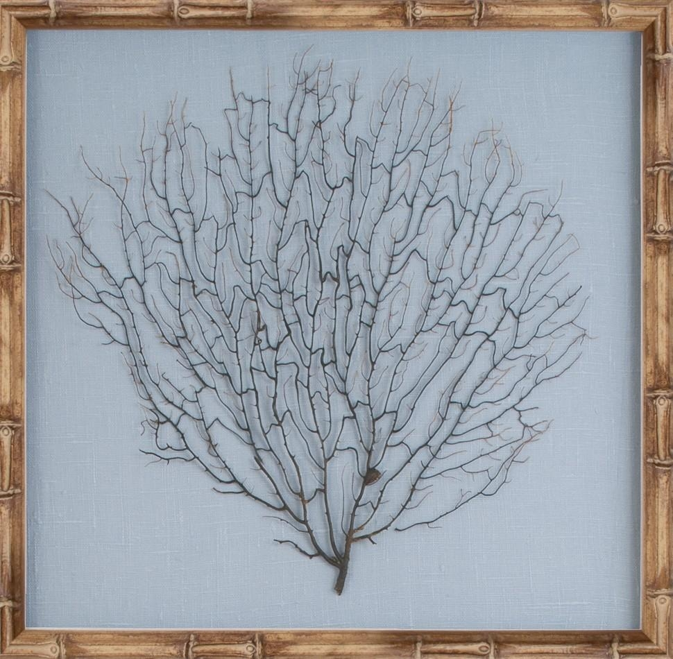 The Well Appointed House – Luxuries For The Home – The Well For Sea Fan Wall Art (Image 16 of 20)