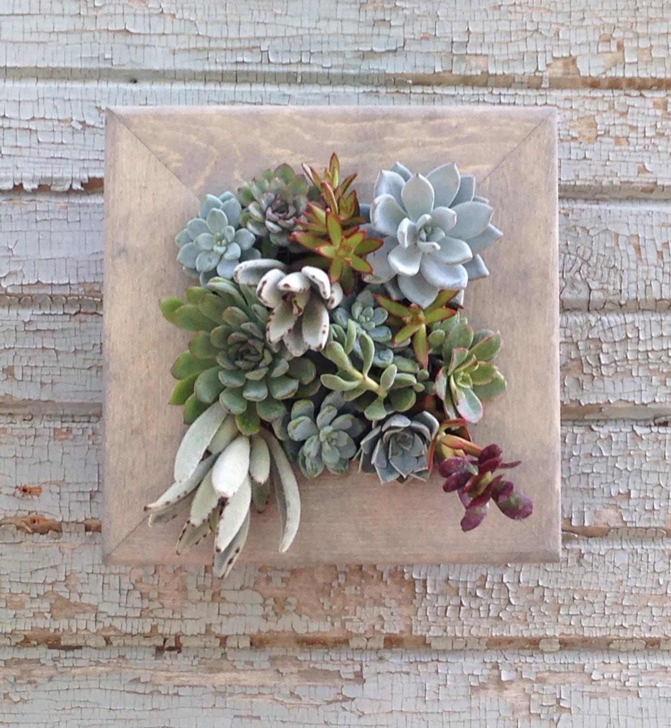 Vertical Garden 10X10 Living Wall Succulent Regarding Floral & Plant Wall Art (Image 20 of 20)