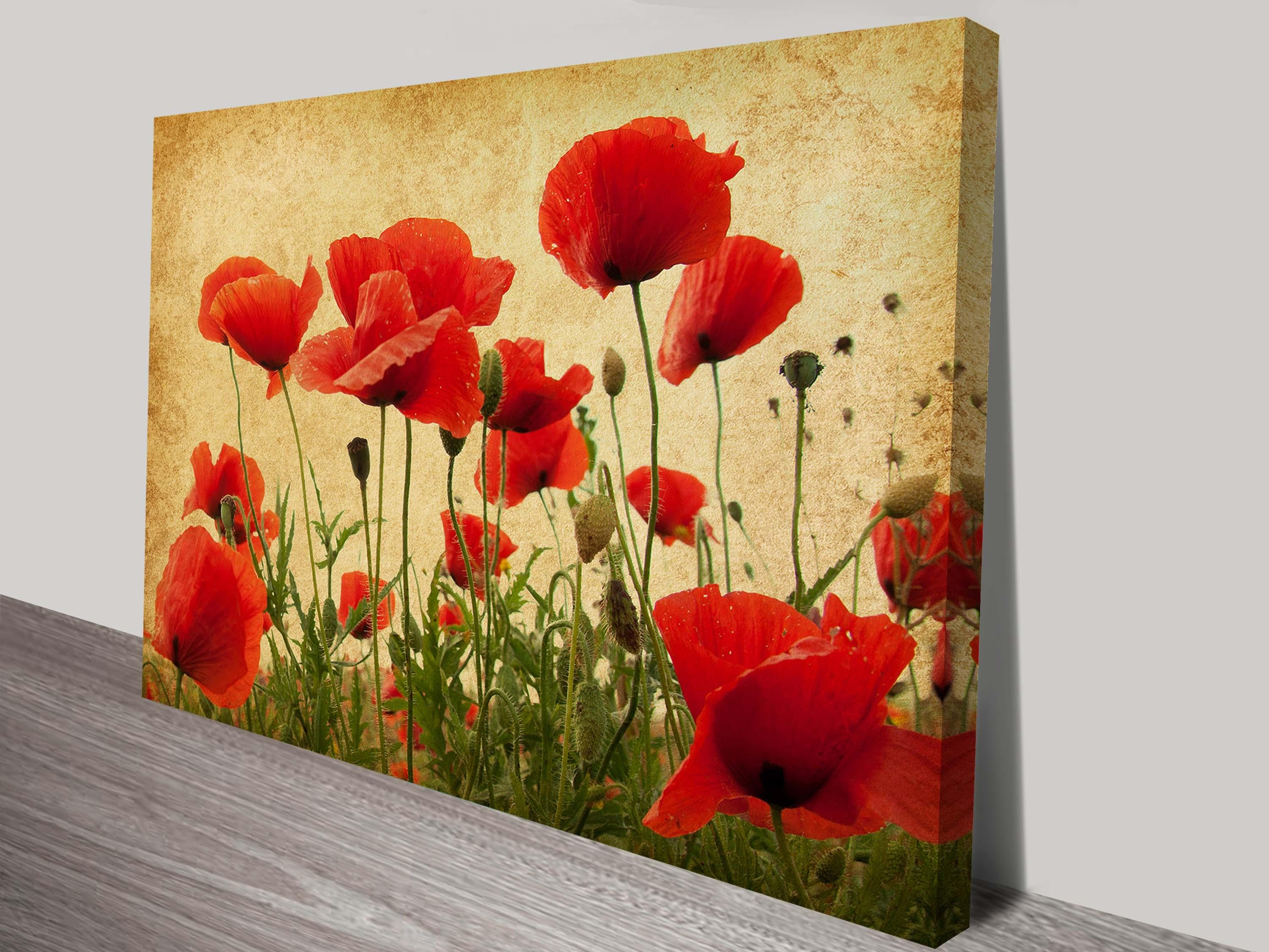 Vintage Poppies Flower Art | Canvas Prints Melbourne pertaining to Metal Poppy Wall Art