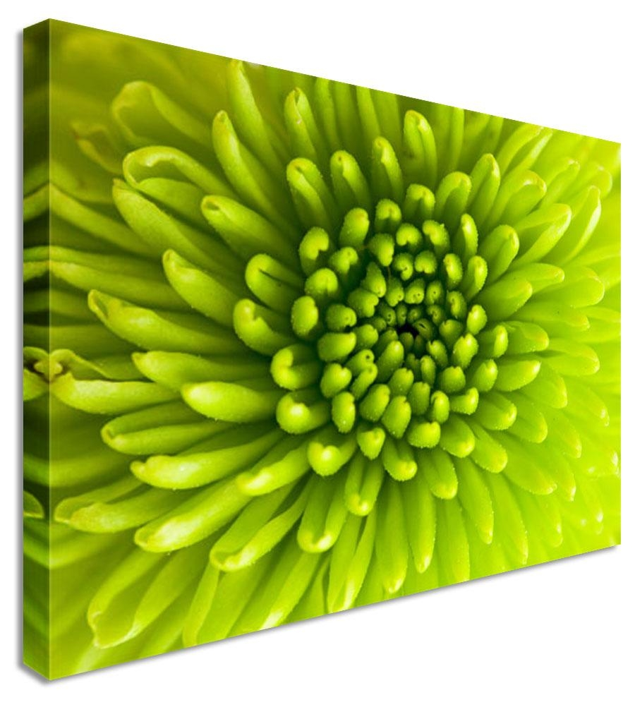 Wall Art Designs: Cool High Pixel Green Canvas Wall Art With Best Pertaining To Large Green Wall Art (Image 17 of 20)