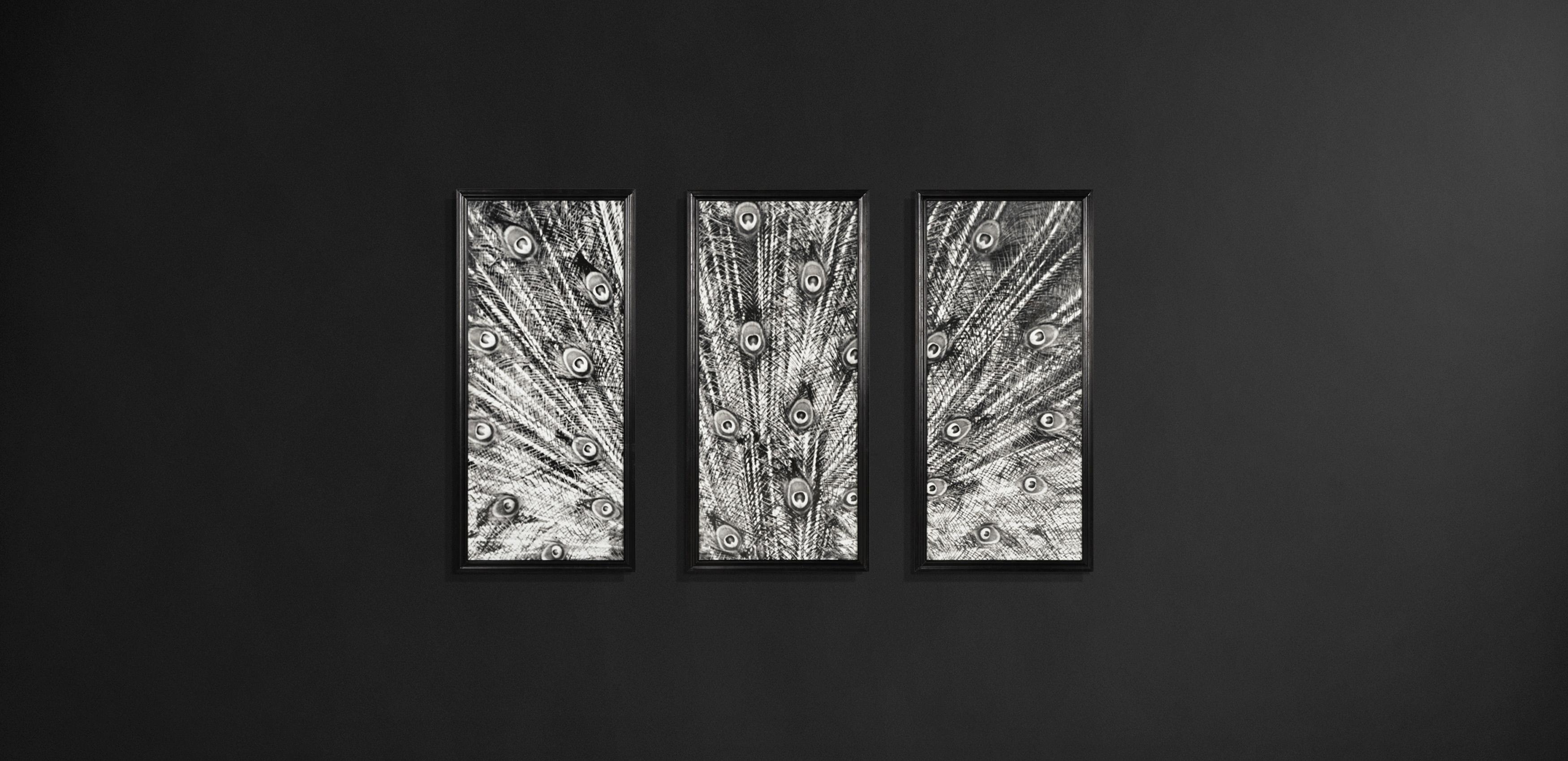 Wall Art – Furniture Designs   Timothy Oulton Within Animal Wall Art (View 13 of 20)