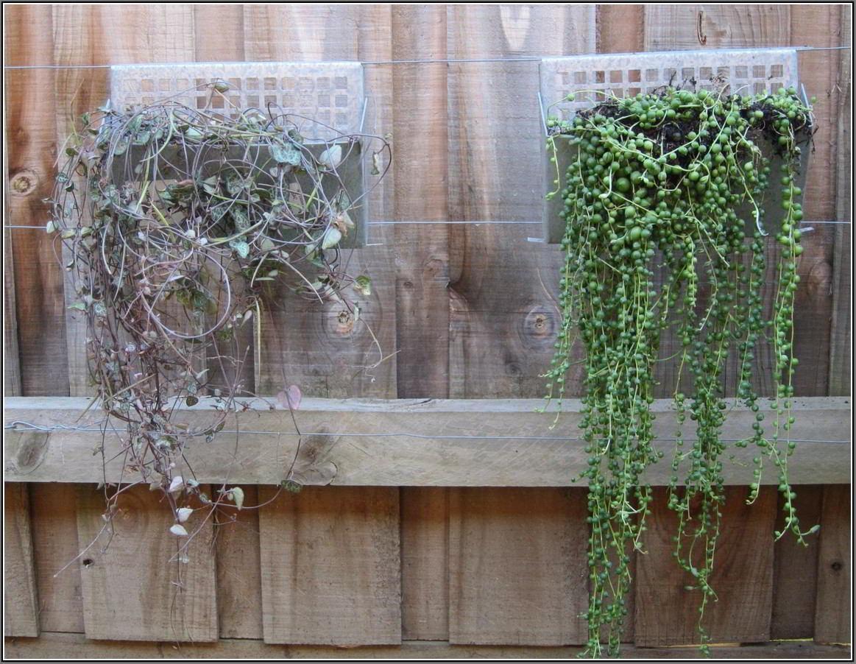 Wall Art Ideas Design : Garden White Outside Wall Art Ideas With Regard To Outside Wall Art (View 18 of 20)