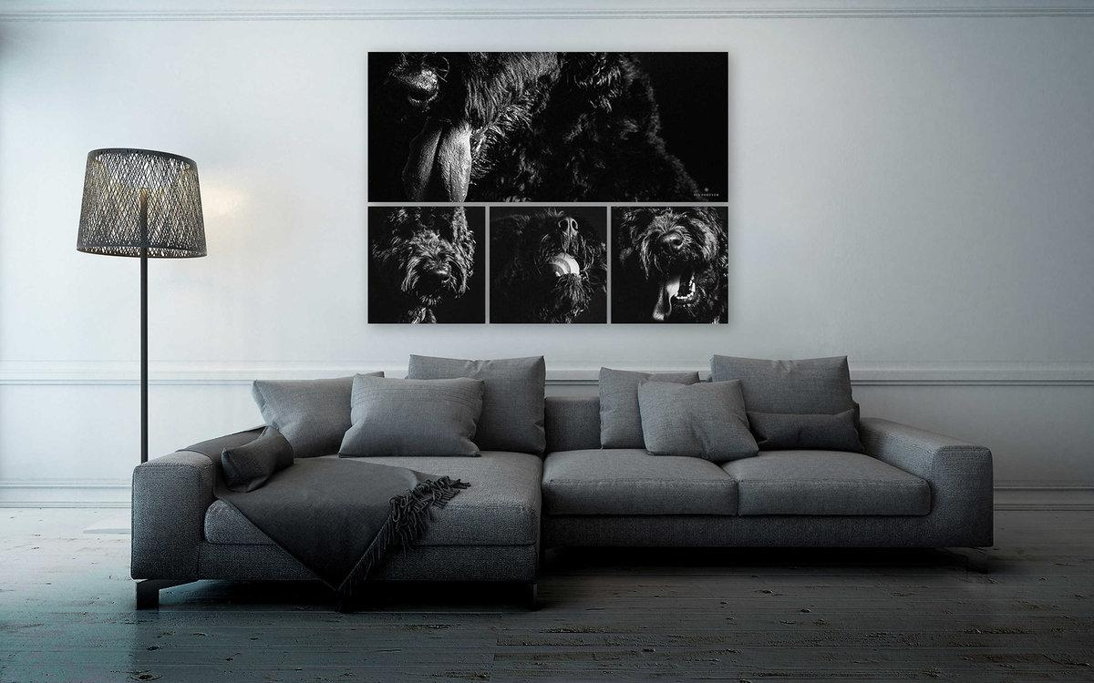Wall Art – Signature Collections At Fia Forever Photography Pertaining To Photography Wall Art (View 11 of 20)