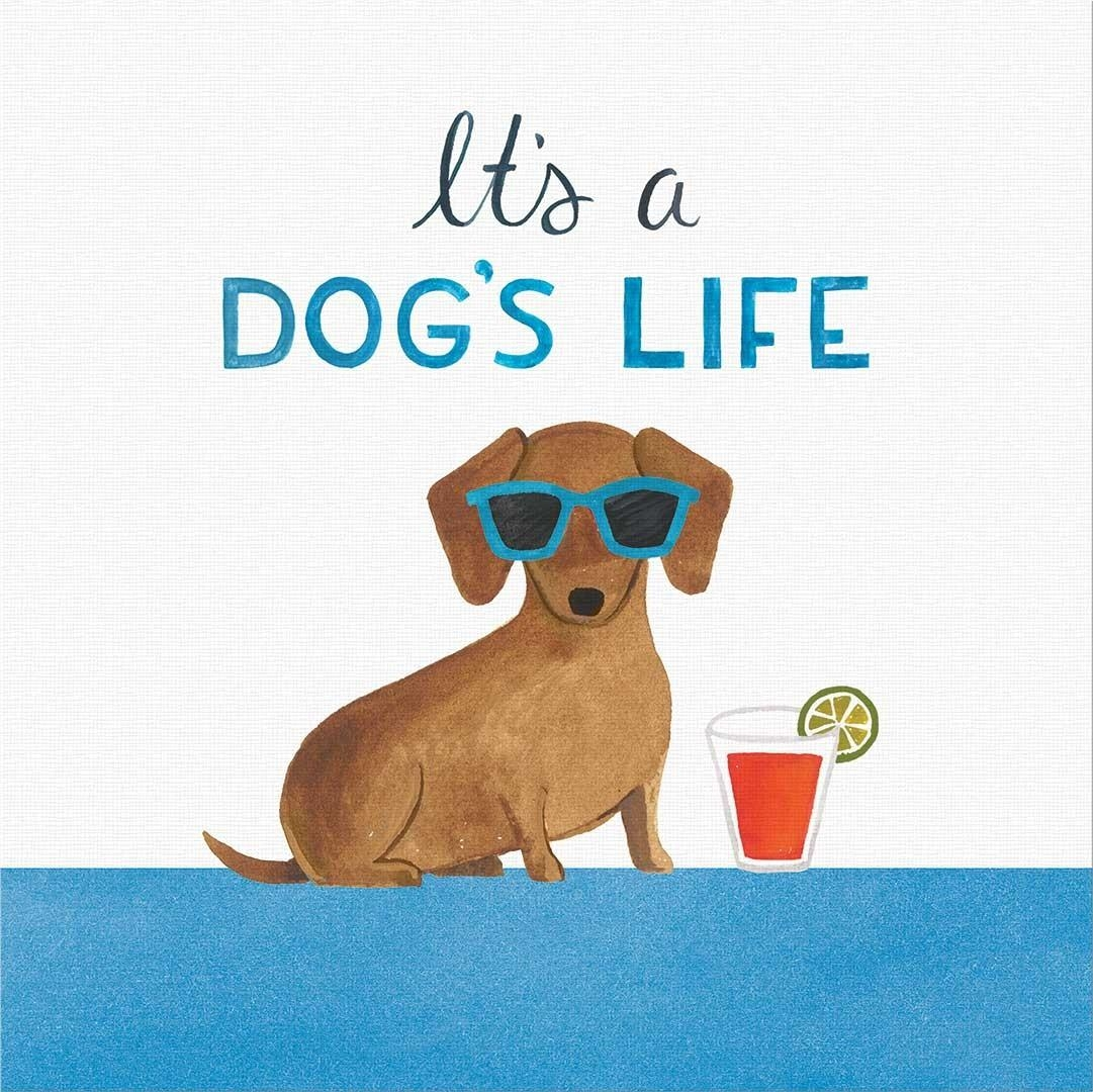 Wall Decor – Punch Studio – Shop Within Dachshund Wall Art (Image 20 of 20)