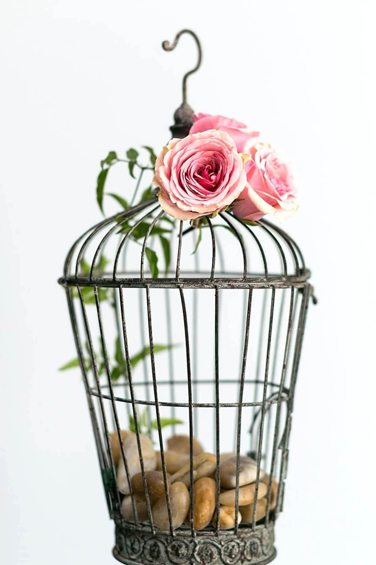 White Bird Cage Stand Indoor Aviary Plans Green – Www.off On (View 14 of 20)
