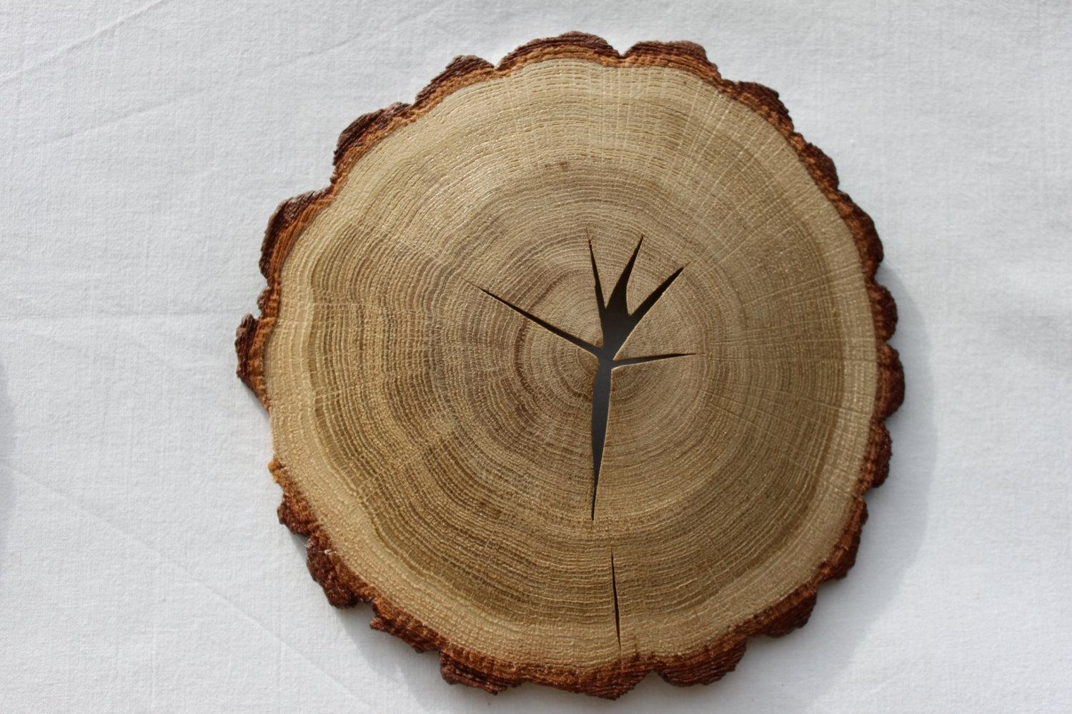 Wood Slice Art Nature Made / Wood Slice Wall Rustic Decor Pertaining To Natural Wood Wall Art (View 11 of 20)