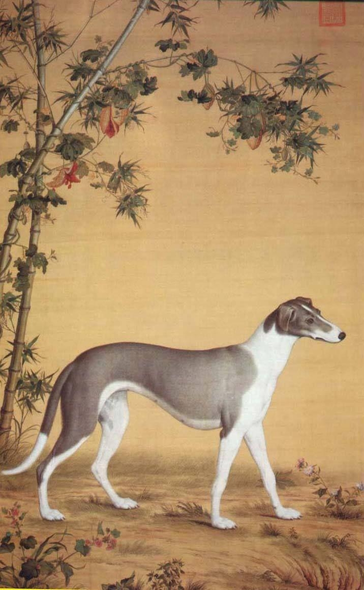 168 Best Greyhounds In Art Images On Pinterest | Greyhound Art In Italian Greyhound Wall Art (Image 2 of 20)