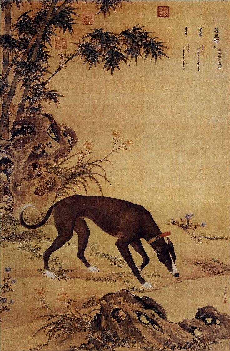 1917 Best Sighthound Sitings Images On Pinterest   Greyhounds Inside Italian Greyhound Wall Art (Image 3 of 20)